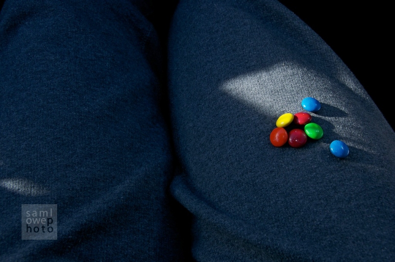 M&M's in the photographer's lap while relocating from Jersey to Cincy